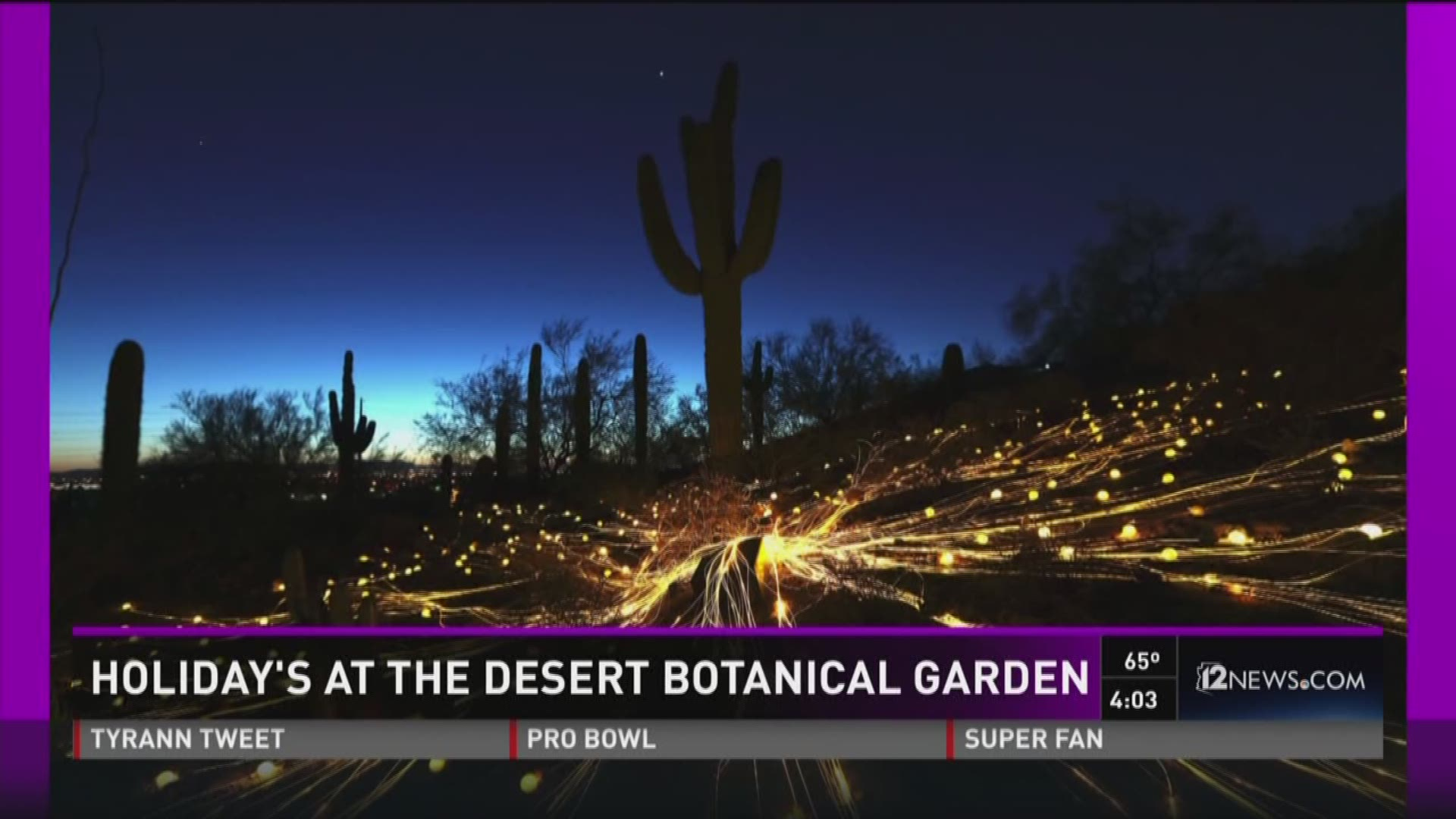 Image Gallery Luminarias Desert Botanical Garden