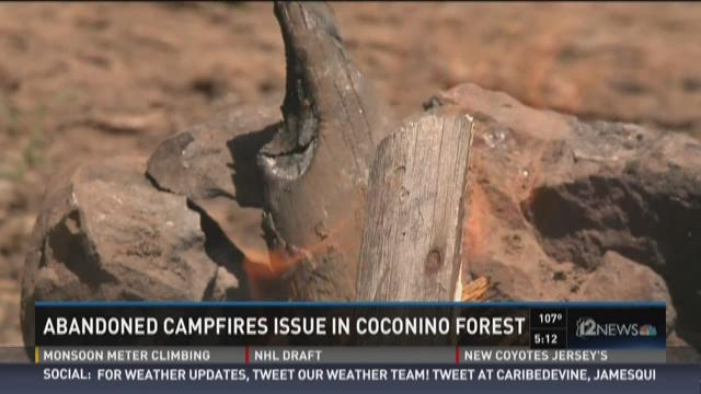 Abandoned campfires issue in Coconino forest can cause fires