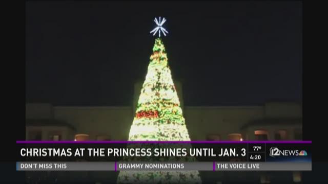 christmas at the princess